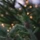 E anche quest'anno arriva il Natale: l'accensione dell'albero